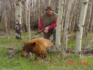 Guided Bear Hunts in Montana