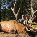 Elk Hunting in Montana