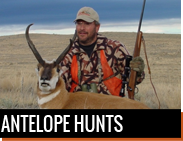 Antelope Hunts in Montana