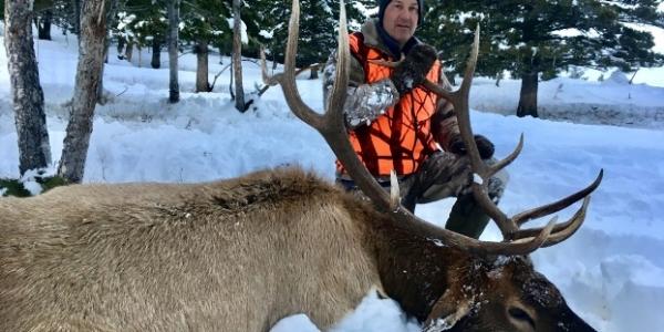 Montana Guided Elk Hunts & Big Game Hunting   Elk Ridge